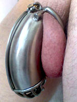 Cocks with chastity belts